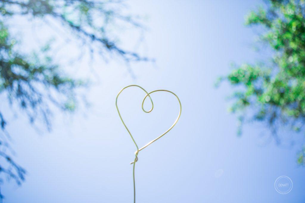 Coeur fil de fer