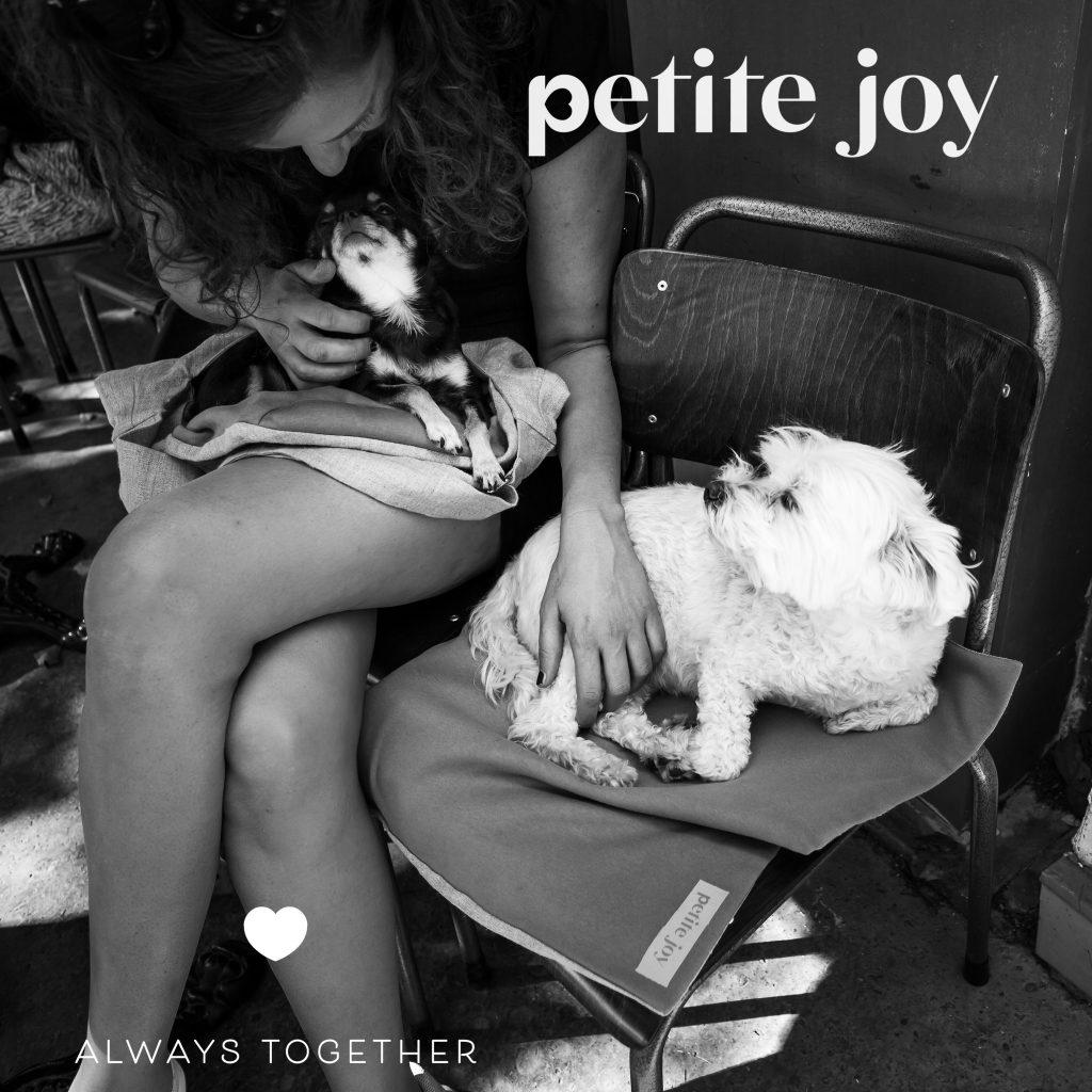 photo d'ambiance Petite Joy avec petits chiens